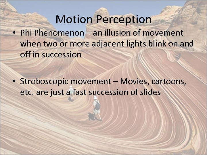Motion Perception • Phi Phenomenon – an illusion of movement when two or more