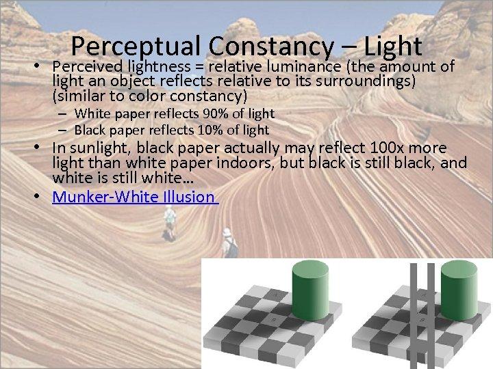Perceptual Constancy – Light • Perceived lightness = relative luminance (the amount of light