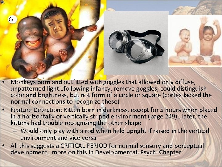• Monkeys born and outfitted with goggles that allowed only diffuse, unpatterned light…following