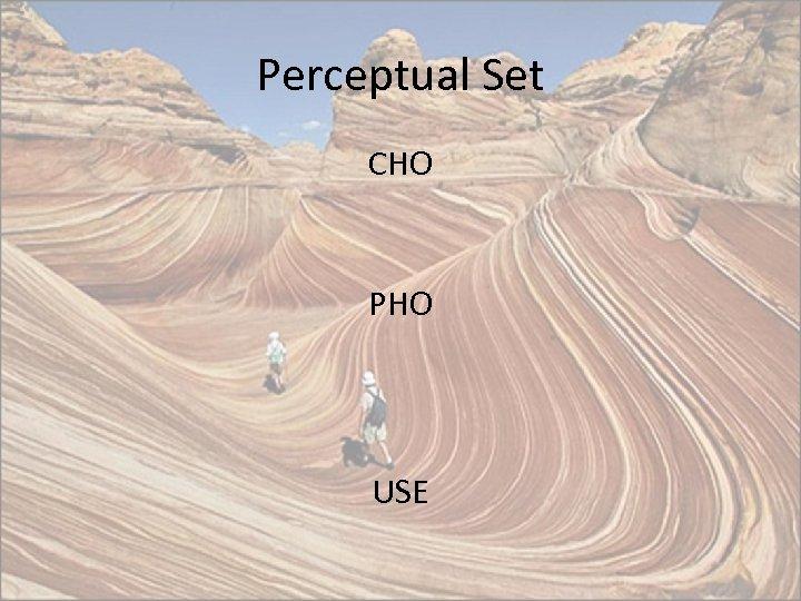 Perceptual Set CHO PHO USE