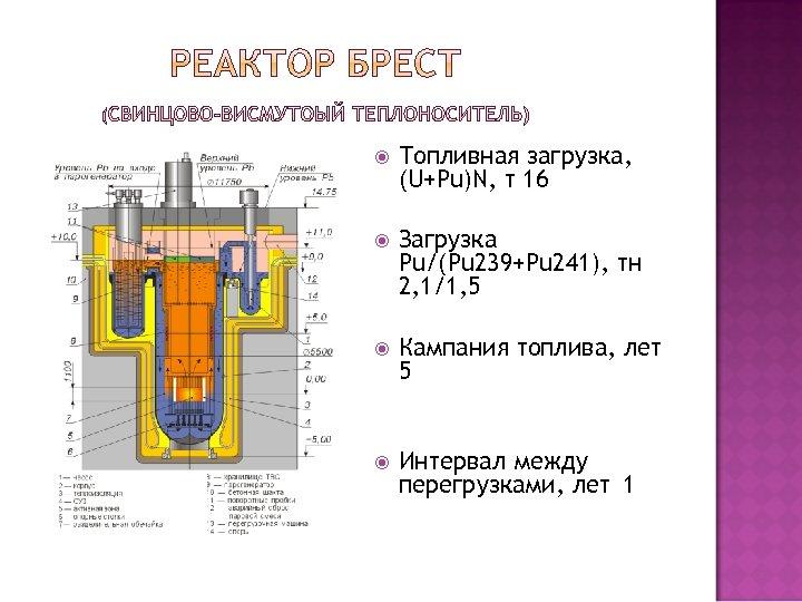 Топливная загрузка, (U+Pu)N, т 16 Загрузка Pu/(Pu 239+Pu 241), тн 2, 1/1, 5