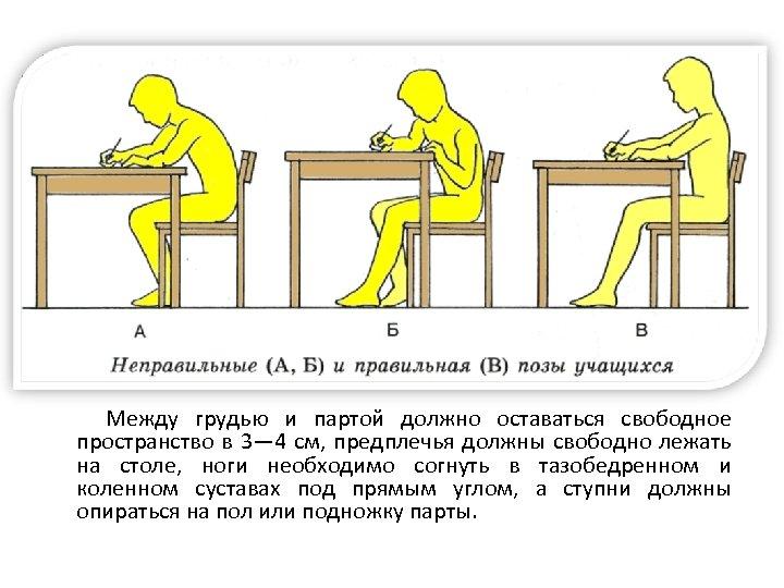 Между грудью и партой должно оставаться свободное пространство в 3— 4 см, предплечья должны