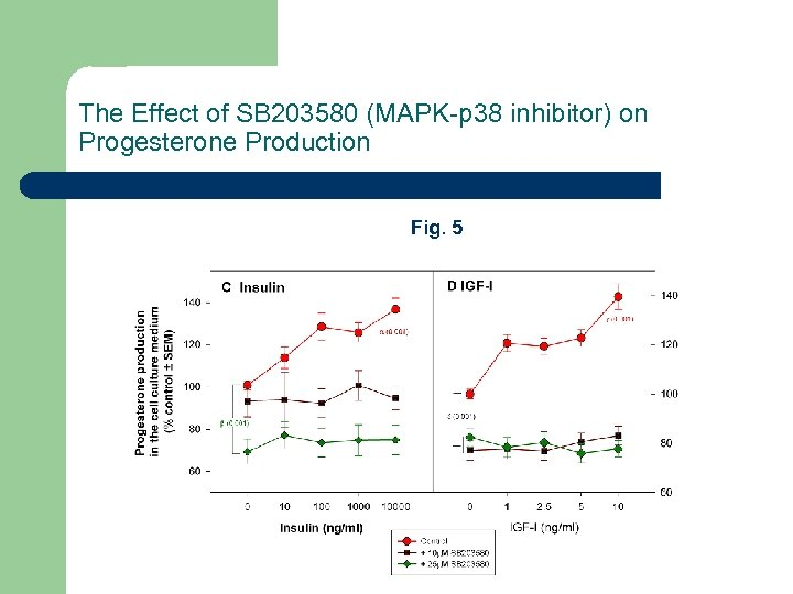 The Effect of SB 203580 (MAPK-p 38 inhibitor) on Progesterone Production Fig. 5