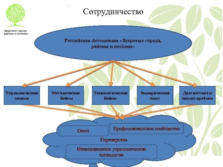 Сотрудничество Российская Ассоциация «Здоровые города, районы и посёлки» Управленческие модели Методические Кейсы Опыт Технологические