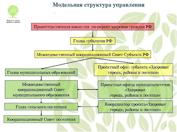 Модельная структура управления Правительственная комиссия по охране здоровья граждан РФ Главы субъектов РФ Межведомственный