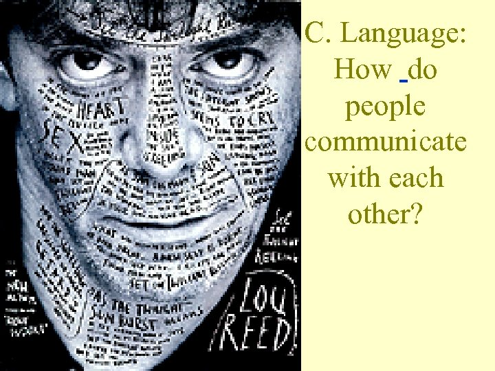 C. Language: How do people communicate with each other?