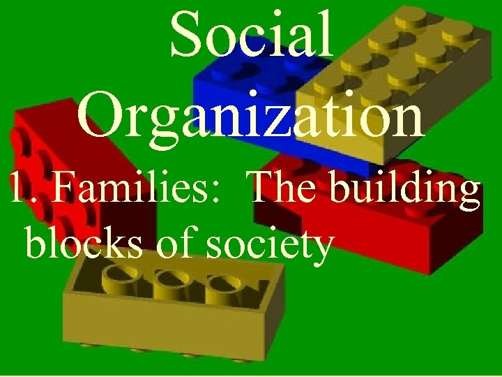 Social Organization 1. Families: The building blocks of society