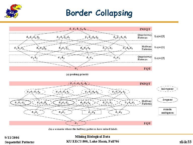 Border Collapsing 9/11/2006 Sequential Patterns Mining Biological Data KU EECS 800, Luke Huan, Fall'