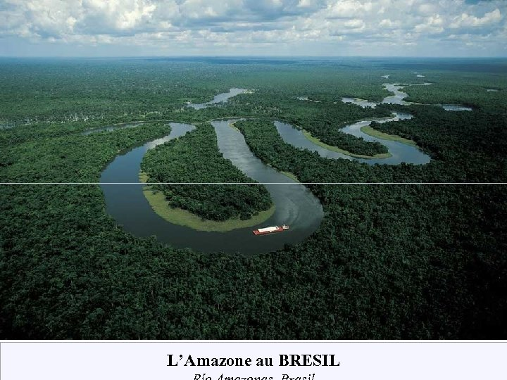 L'Amazone au BRESIL