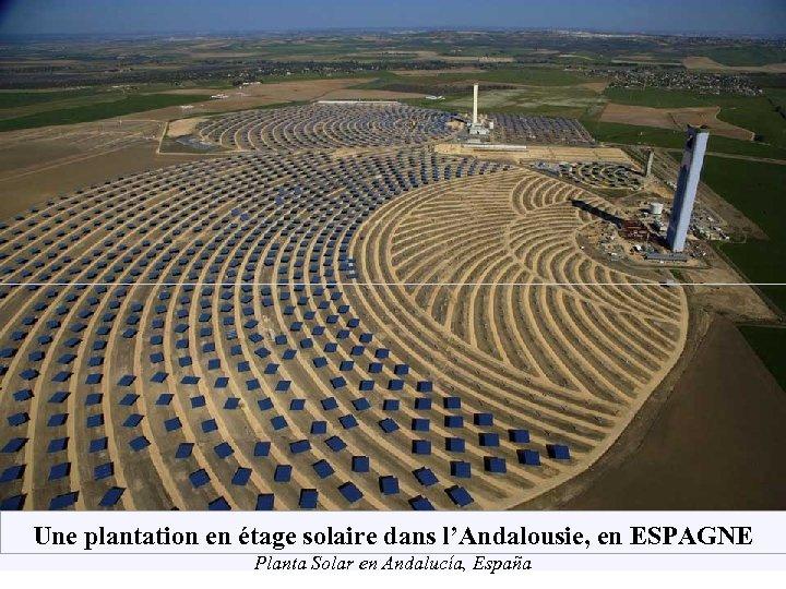 Une plantation en étage solaire dans l'Andalousie, en ESPAGNE Planta Solar en Andalucía, España