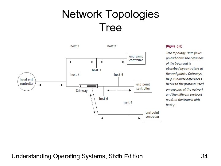 Network Topologies Tree Understanding Operating Systems, Sixth Edition 34