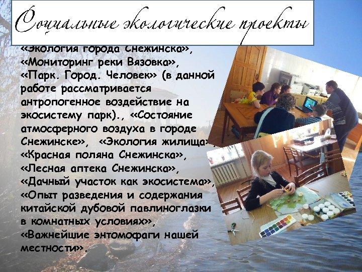 «Экология города Снежинска» , «Мониторинг реки Вязовка» , «Парк. Город. Человек» (в данной