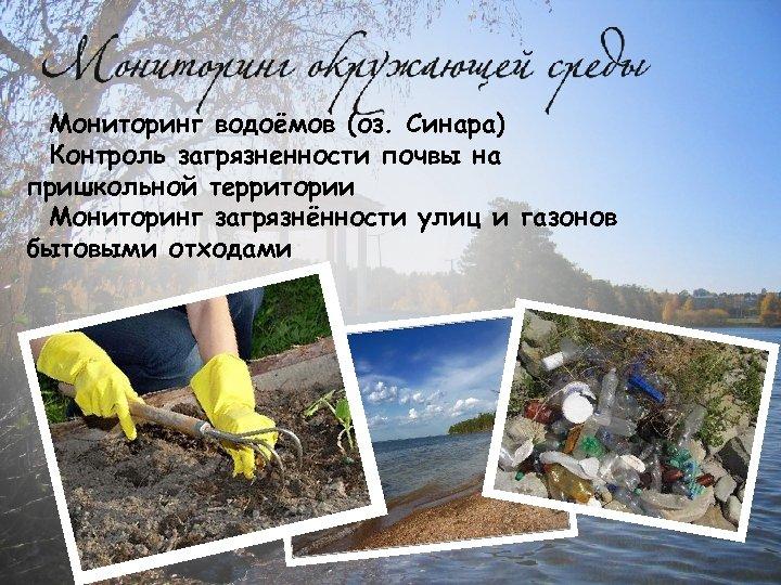Мониторинг водоёмов (оз. Синара) Контроль загрязненности почвы на пришкольной территории Мониторинг загрязнённости улиц и