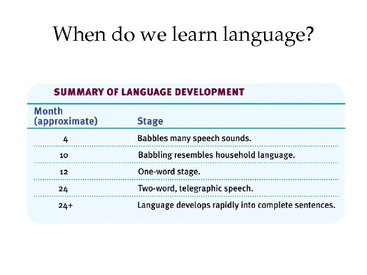 When do we learn language?