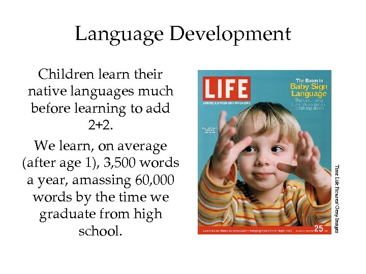 Language Development Time Life Pictures/ Getty Images Children learn their native languages much before