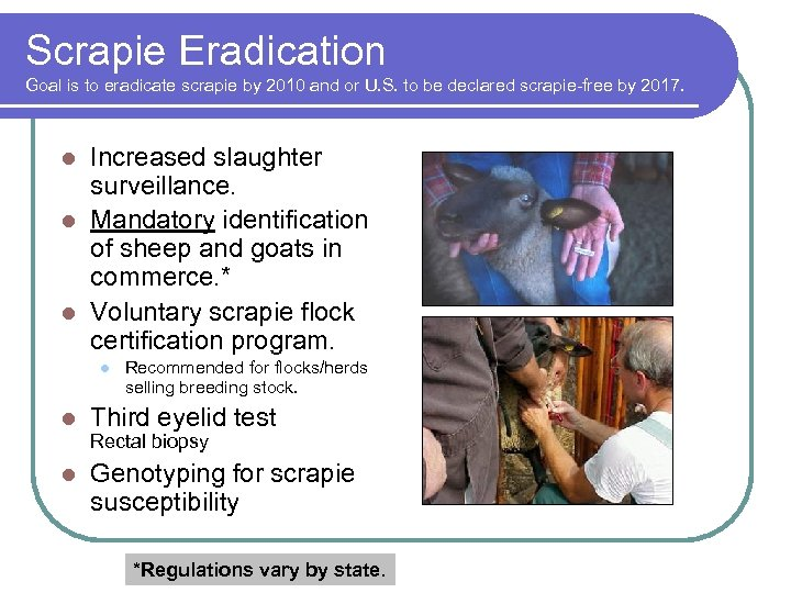 Scrapie Eradication Goal is to eradicate scrapie by 2010 and or U. S. to