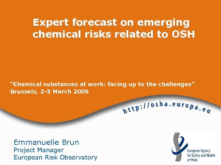 """Expert forecast on emerging chemical risks related to OSH """"Chemical substances at work: facing"""