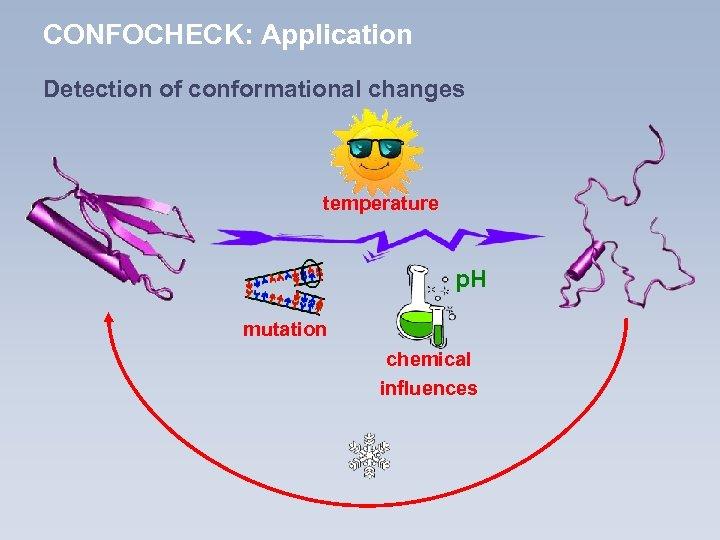 CONFOCHECK: Application Detection of conformational changes temperature p. H mutation chemical influences