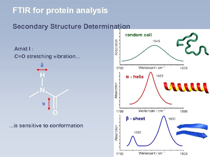 FTIR for protein analysis Secondary Structure Determination random coil Amid I : C=O stretching