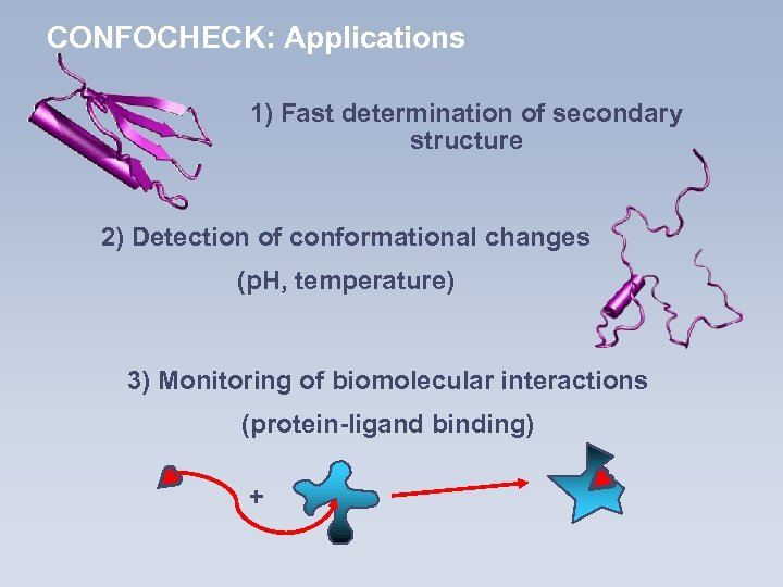 CONFOCHECK: Applications 1) Fast determination of secondary structure 2) Detection of conformational changes (p.
