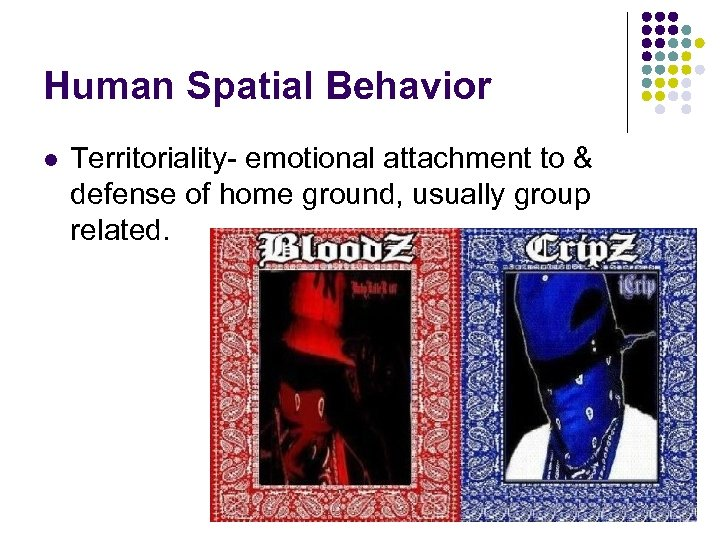 Human Spatial Behavior l Territoriality- emotional attachment to & defense of home ground, usually