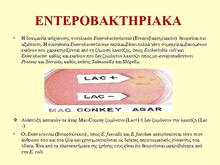 ΕΝΤΕΡΟΒΑΚΤΗΡΙΑΚΑ • Η δοκιμασία ανίχνευσης συνολικών Enterobacteriaceae (Εντεροβακτηριακών) θεωρείται πιο αξιόπιστη. Η οικογένεια Enterobacteriaceae