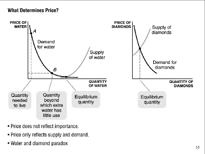What Determines Price? • Price does not reflect importance. • Price only reflects supply