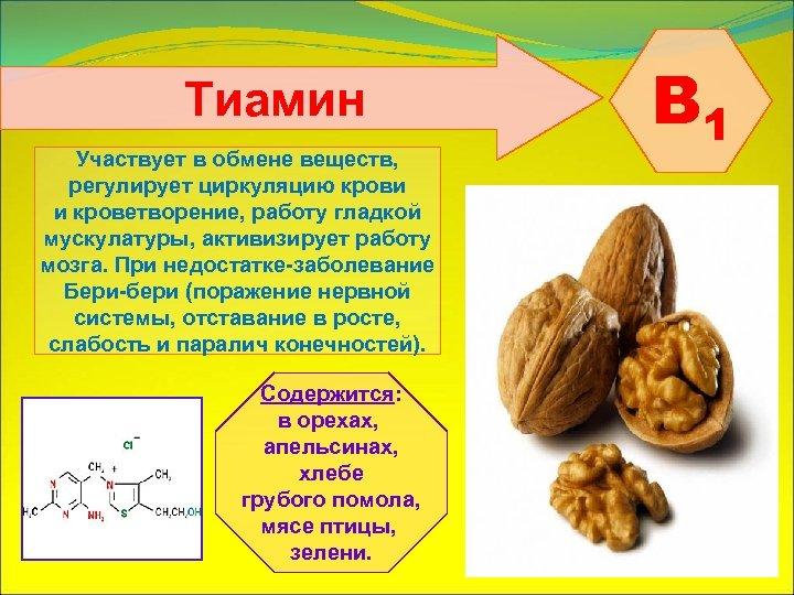 Тиамин Участвует в обмене веществ, регулирует циркуляцию крови и кроветворение, работу гладкой мускулатуры, активизирует