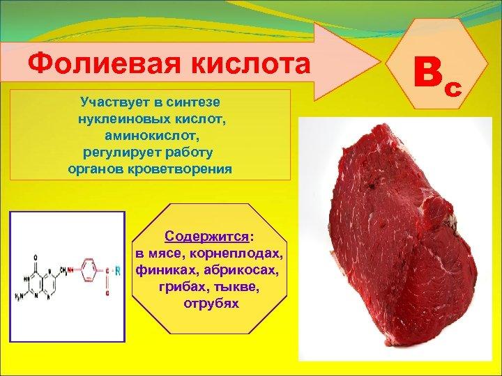 Фолиевая кислота Участвует в синтезе нуклеиновых кислот, аминокислот, регулирует работу органов кроветворения Содержится: в
