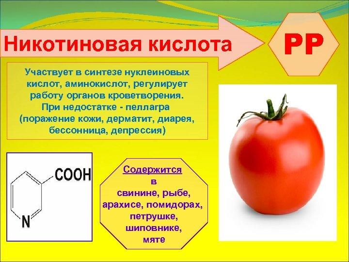 Никотиновая кислота Участвует в синтезе нуклеиновых кислот, аминокислот, регулирует работу органов кроветворения. При недостатке