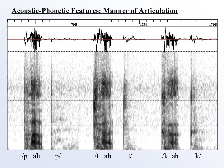 Acoustic-Phonetic Features: Manner of Articulation /p ah p/ /t ah t/ /k ah k/