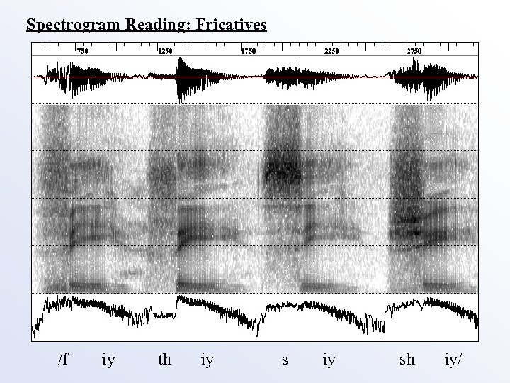 Spectrogram Reading: Fricatives /f iy th iy sh iy/