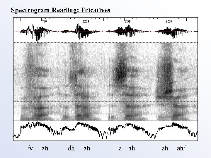 Spectrogram Reading: Fricatives /v ah dh ah zh ah/