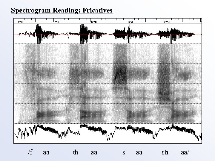 Spectrogram Reading: Fricatives /f aa th aa sh aa/