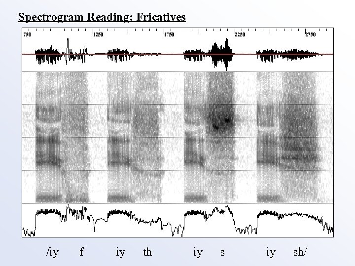 Spectrogram Reading: Fricatives /iy f iy th iy sh/