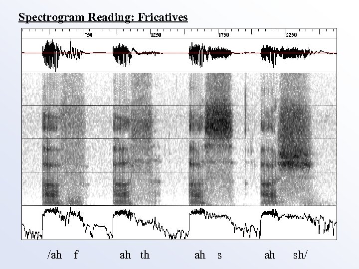 Spectrogram Reading: Fricatives /ah f ah th ah sh/