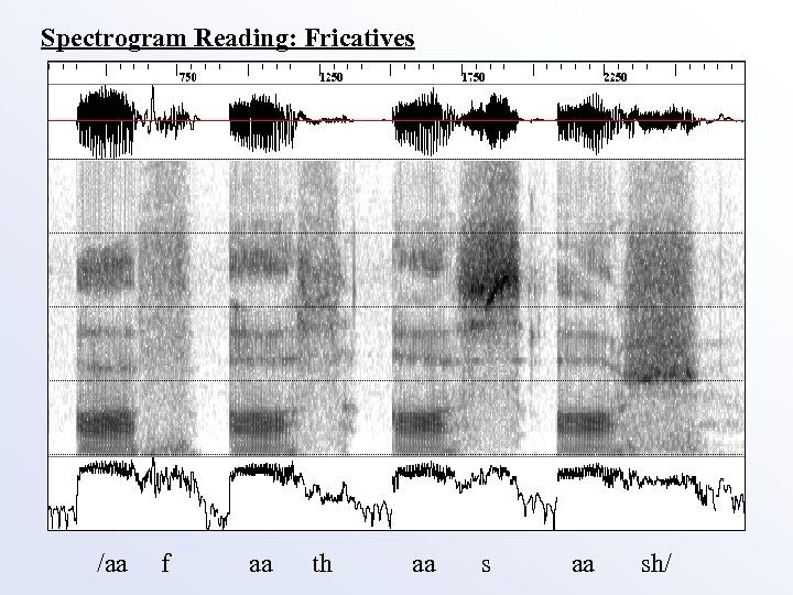Spectrogram Reading: Fricatives /aa f aa th aa sh/