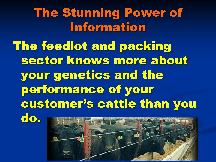 The Stunning Power of Information The feedlot and packing sector knows more about your