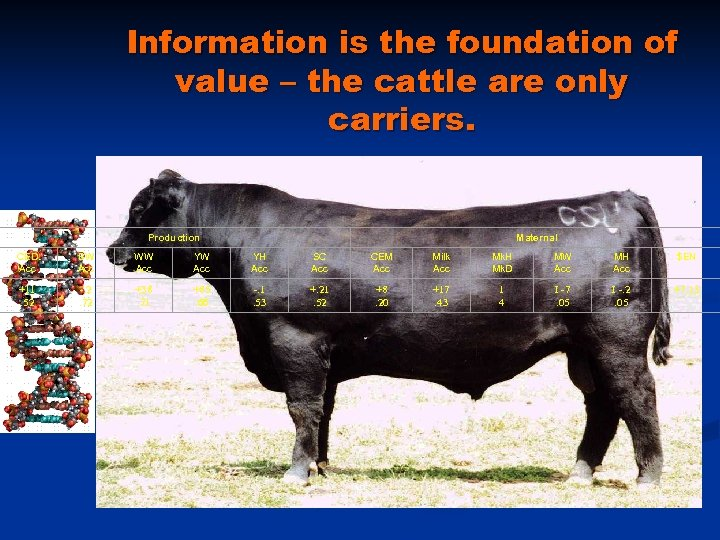 Information is the foundation of value – the cattle are only carriers. Production Maternal