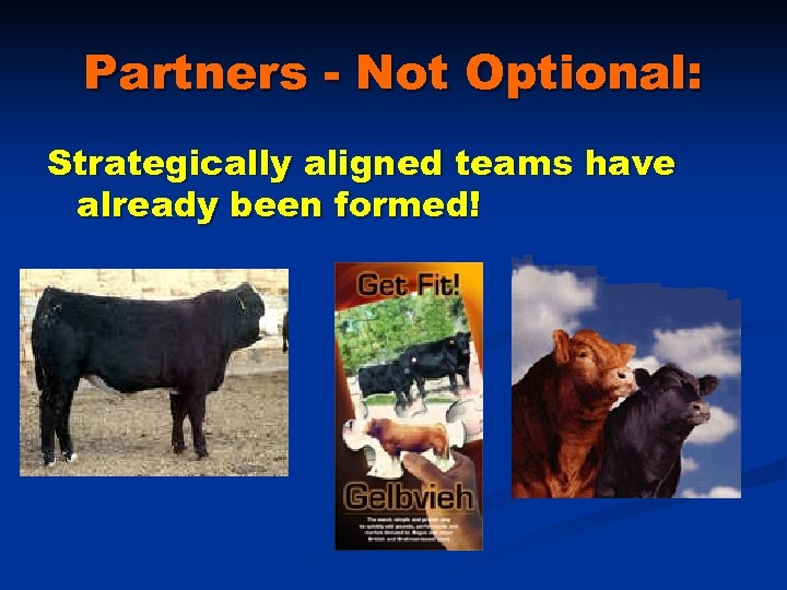 Partners - Not Optional: Strategically aligned teams have already been formed!