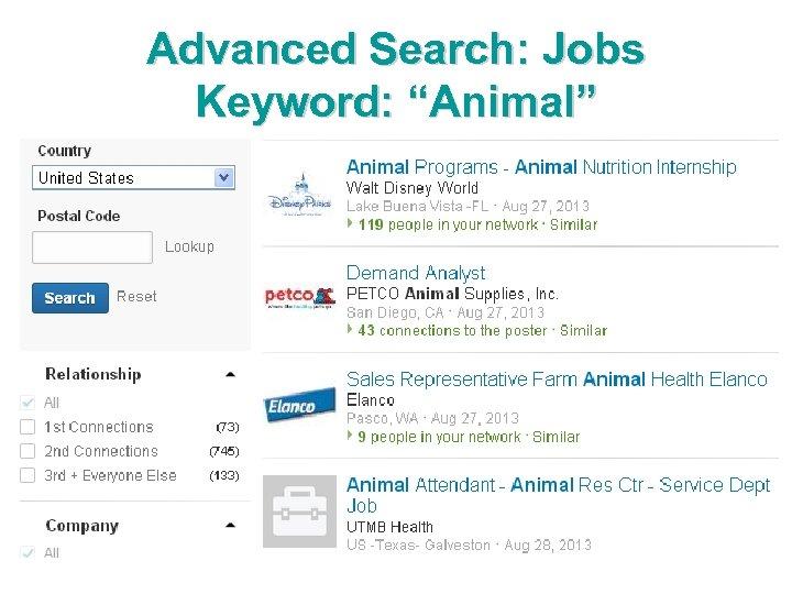 "Advanced Search: Jobs Keyword: ""Animal"""