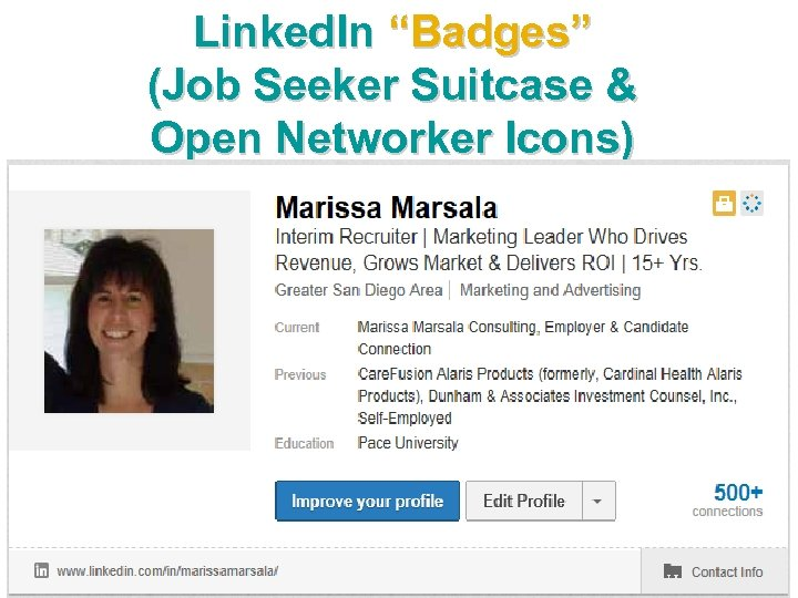"""Linked. In """"Badges"""" (Job Seeker Suitcase & Open Networker Icons)"""