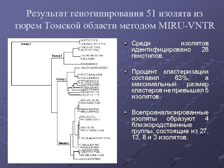 Результат генотипирования 51 изолята из тюрем Томской области методом MIRU-VNTR Среди изолятов идентифицировано 28