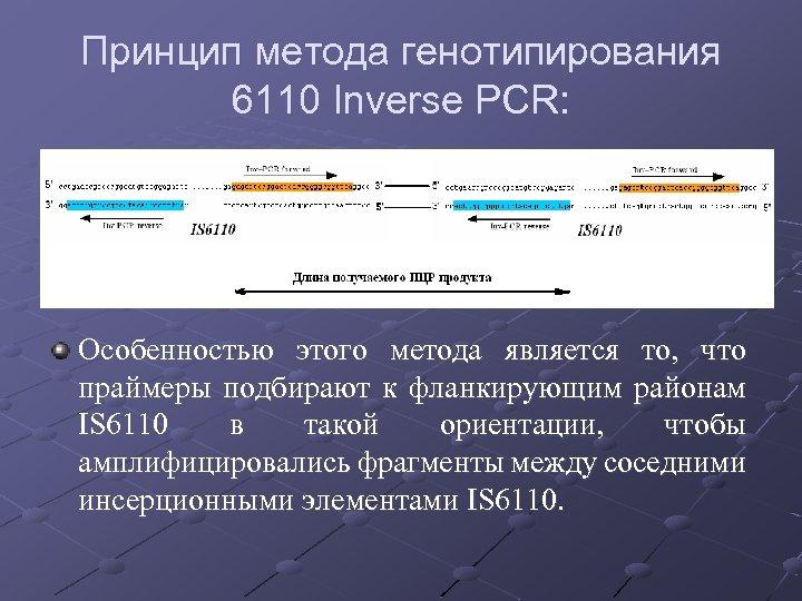 Принцип метода генотипирования 6110 Inverse PCR: Особенностью этого метода является то, что праймеры подбирают