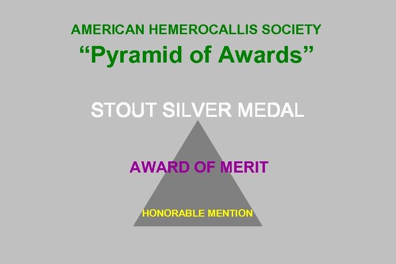 "AMERICAN HEMEROCALLIS SOCIETY ""Pyramid of Awards"" STOUT SILVER MEDAL AWARD OF MERIT HONORABLE MENTION"