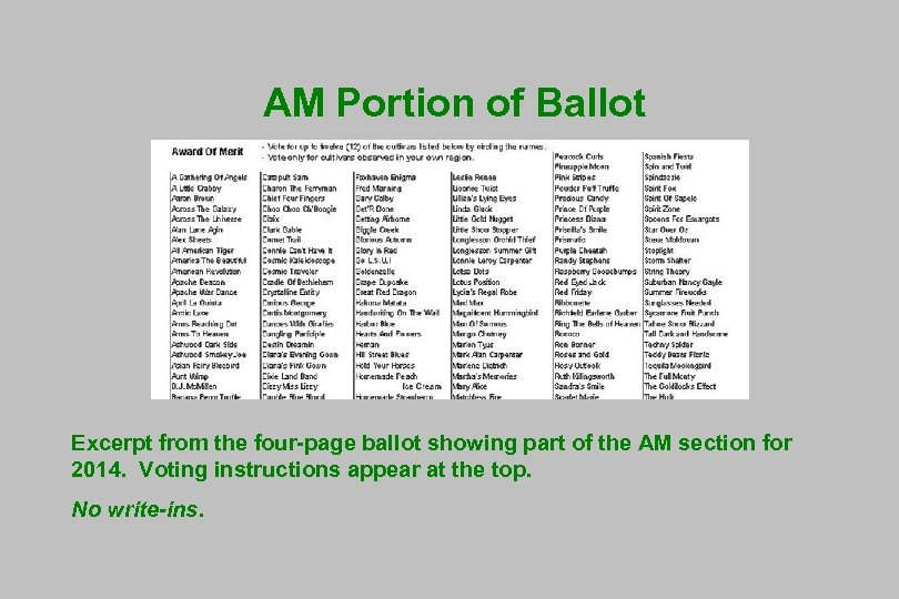 AM Portion of Ballot Excerpt from the four-page ballot showing part of the AM