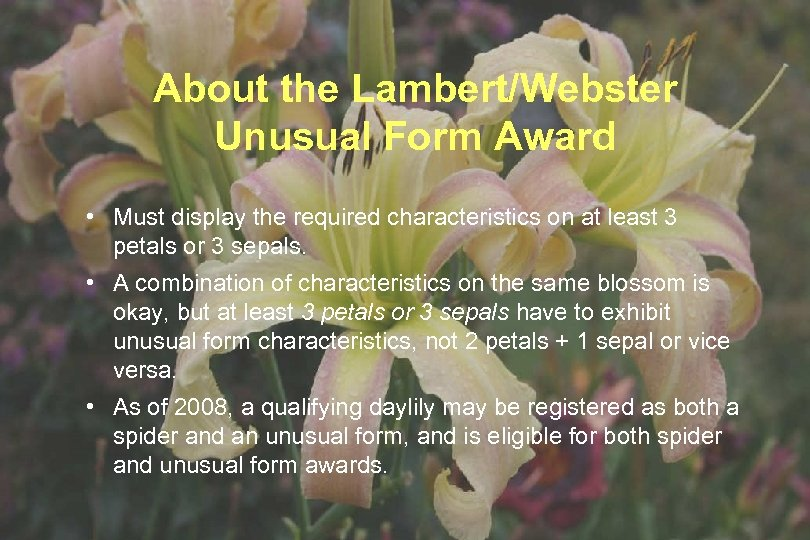 About the Lambert/Webster Unusual Form Award • Must display the required characteristics on at
