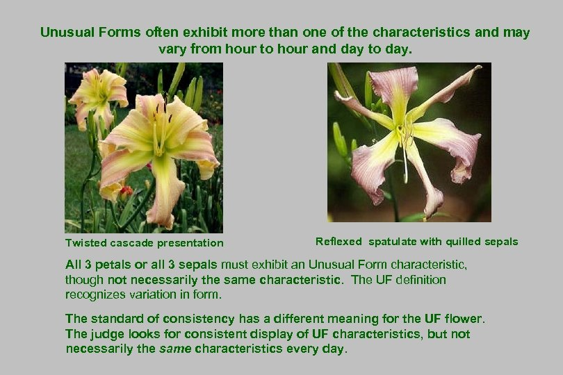 Unusual Forms often exhibit more than one of the characteristics and may vary from