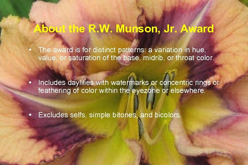 About the R. W. Munson, Jr. Award The award is for distinct patterns: a