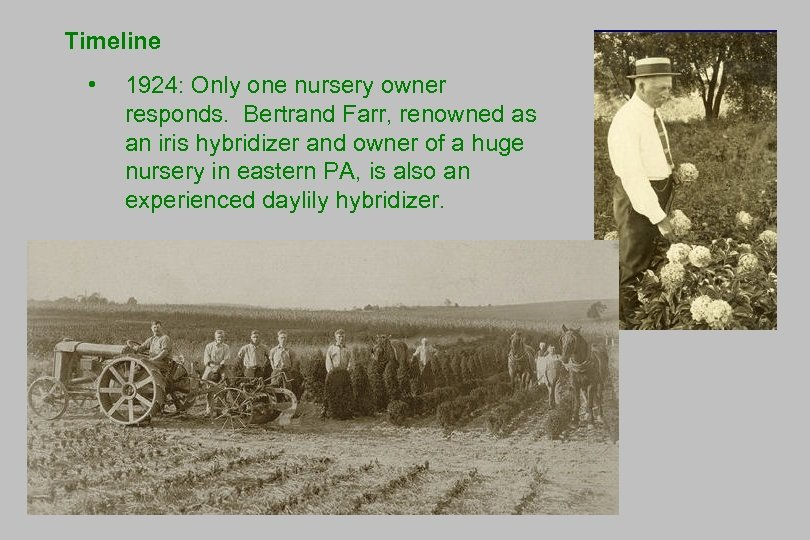 Timeline • 1924: Only one nursery owner responds. Bertrand Farr, renowned as an iris